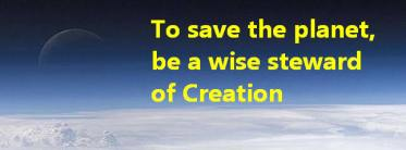 11 To save the planet, be a wise steward of Creation