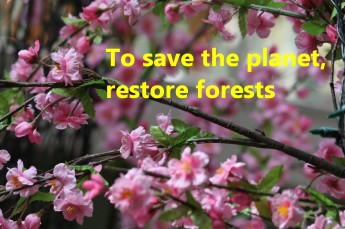 21 To save the planet, restore forests