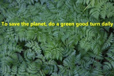 To save the planet, do a green good turn daily